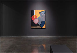 Hessel Museum of Art. Retrospective. New York USA. 2019.